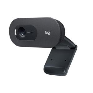 Cámara Web Logitech C505, HD, USB (960-001363)